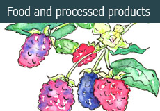 Food and processed products